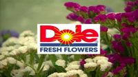 Dole Fresh Flowers
